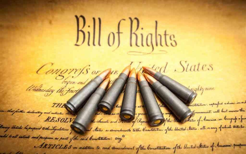 The Second Amendment Explained