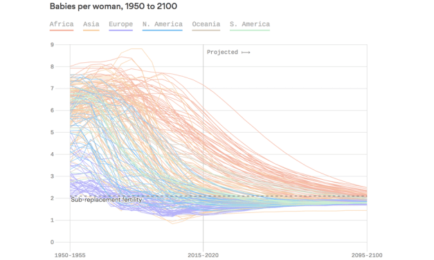 The Aging, Childless Future