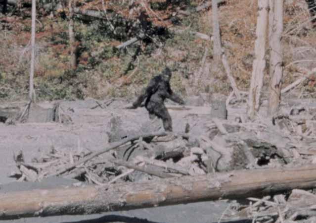 Bigfoot, UFO's, Sandra Bland, and Police Brutality