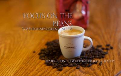 Why Focus Is Important For Success