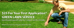 Lawn Service Ad