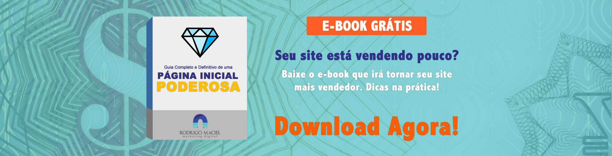 E-book Página Inicial Vendedora e Poderosa