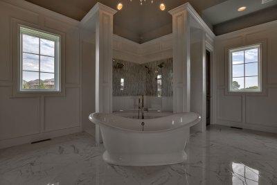 Raphael master bath tub and shower