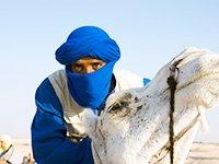 Отзывы туристов о том, что посмотреть в Тунисе