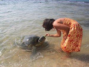 Пляжный отдых на Шри-Ланке