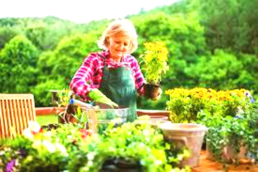 A New Study Says Gardening Is Just as Good as Going to the Gym — Keep Women Healthy