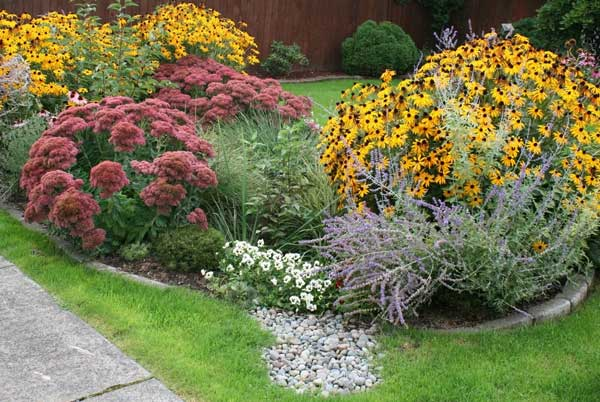 Rain & Butterfly Garden