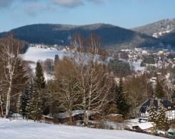 Blick zum Mittelberg (3)