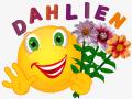 Smiley drei Dahlien 2