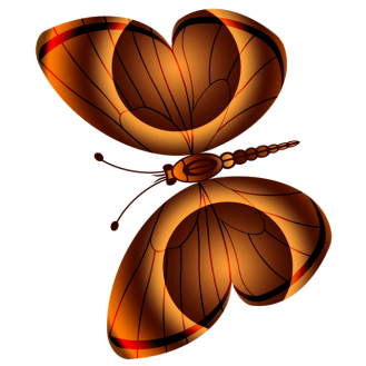 Schmetterling 1