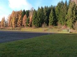 Novemberwald – Sportplatz 2