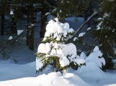 Klingenthal – Schneelandschaften 9