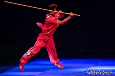 Gevechtskunsten Budo Ryo 2015 - roelfotografie-1277