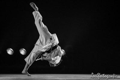 Gevechtskunsten Budo Ryo 2015 - roelfotografie-2054