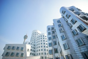 Gehry16