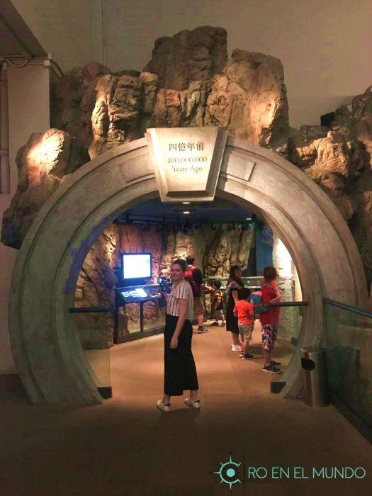 Museo historia Hong Kong