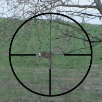 Strzał i reakcja na strzał część 1 - Wysoka łopatka