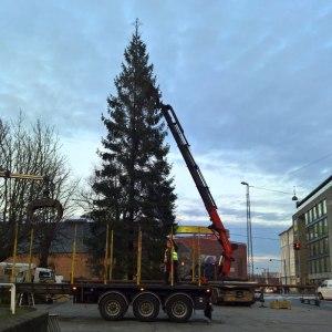 Byens juletræ 2016