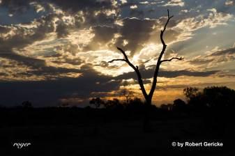 Sunset Northern Territory