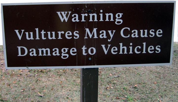 vulture warning