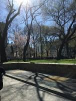 Union Square Park, Manhattan