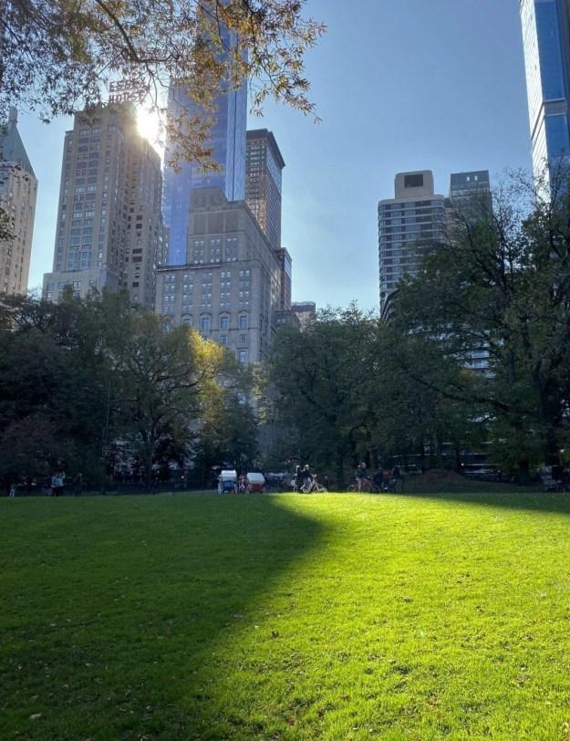 Central Park 11-44 a.m. 11-6-2019.jpg