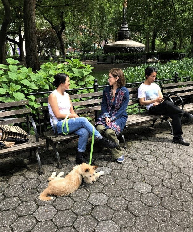 Madison Square Park (7).jpg