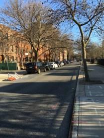 Elliott Place, Fort Greene, Brooklyn, NY