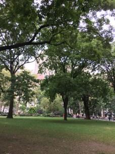 Madison Square Park July 2016