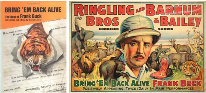 """Omslag till bästsäljare """"Bring 'em Back Alive"""", och en affisch från några år på 30-talet då Buck turnerade med Ringling Bros. och Barnum & Bailey Circus."""