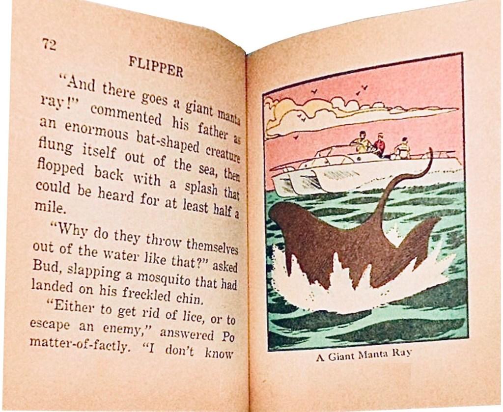 En Big Little Book om Flipper (1967), till priset 39 cent, hade färgbilder. ©Whitman