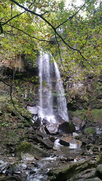 Merlincwrt Falls