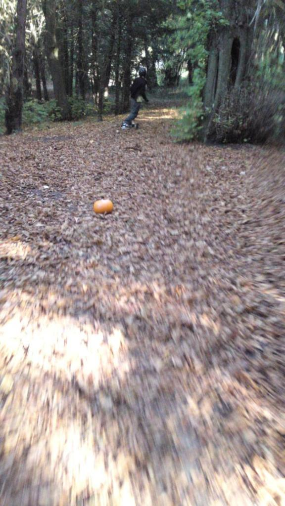 Halloween mountainboarding in Tring Park