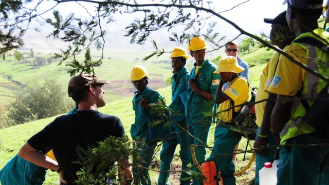 West Africa) Eyes Green Jobs to fight radicalization and stem