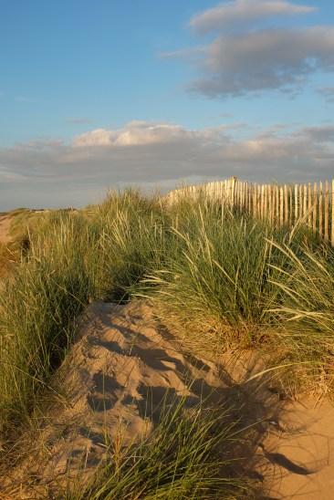 Dunes - Brancaster beach