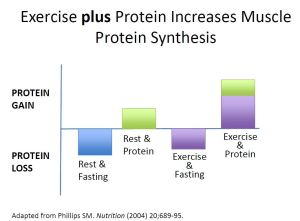 Excercise-plus-protein