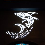 Dubai Aquarium has the largest tank in the world and viewing screen.