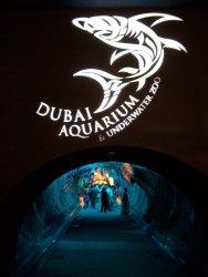 Dubai Aquarium and underater zoo..