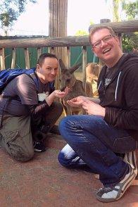 Roguetrippers feeding kangaroo at Busch Gardens in Tampa Florida