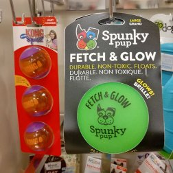 Glow in the Dark dog toys are a great idea to bring on a road trip with your dog. Roguetrippers always bring a variety of options for the Dalmatians.