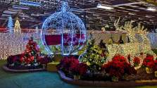 Discover-Halifax-visit-Nova-Scotia-Glow-christmas