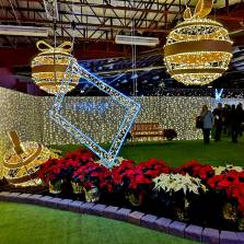 Halifax-Holiday-Events-Christmas-lights-Glow