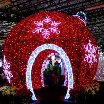 Ornament-of-lights-halifax