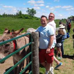 Roguetrippers visit the Donkey Days event at the Donkey Sanctuary in Puslinch, Ontario