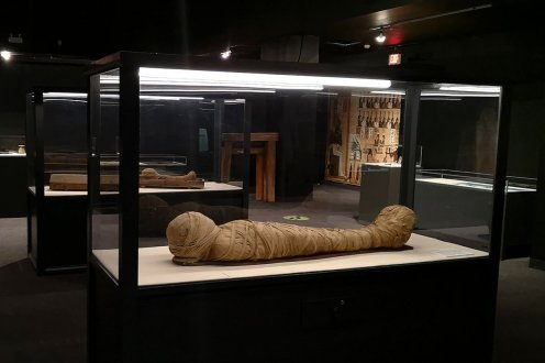 Roguetrippers visited the Egyptian Mummies exhibit at the Museum of Natural History.