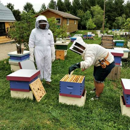 Bee Keeping experience at the Huckleberry Hive when roguetrippers visit Perth County