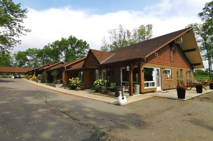 The forest Motel in Stratford is a great place to stay for a weekend outing
