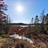 Best-Halifax-area-hiking-trails-roguetrippers