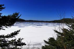 Roguetrippers-Halifax-area-Hiking-Musquodoboit-trailway