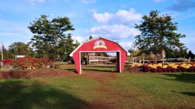 Roguetrippers visit Snyder's Farm several times a year